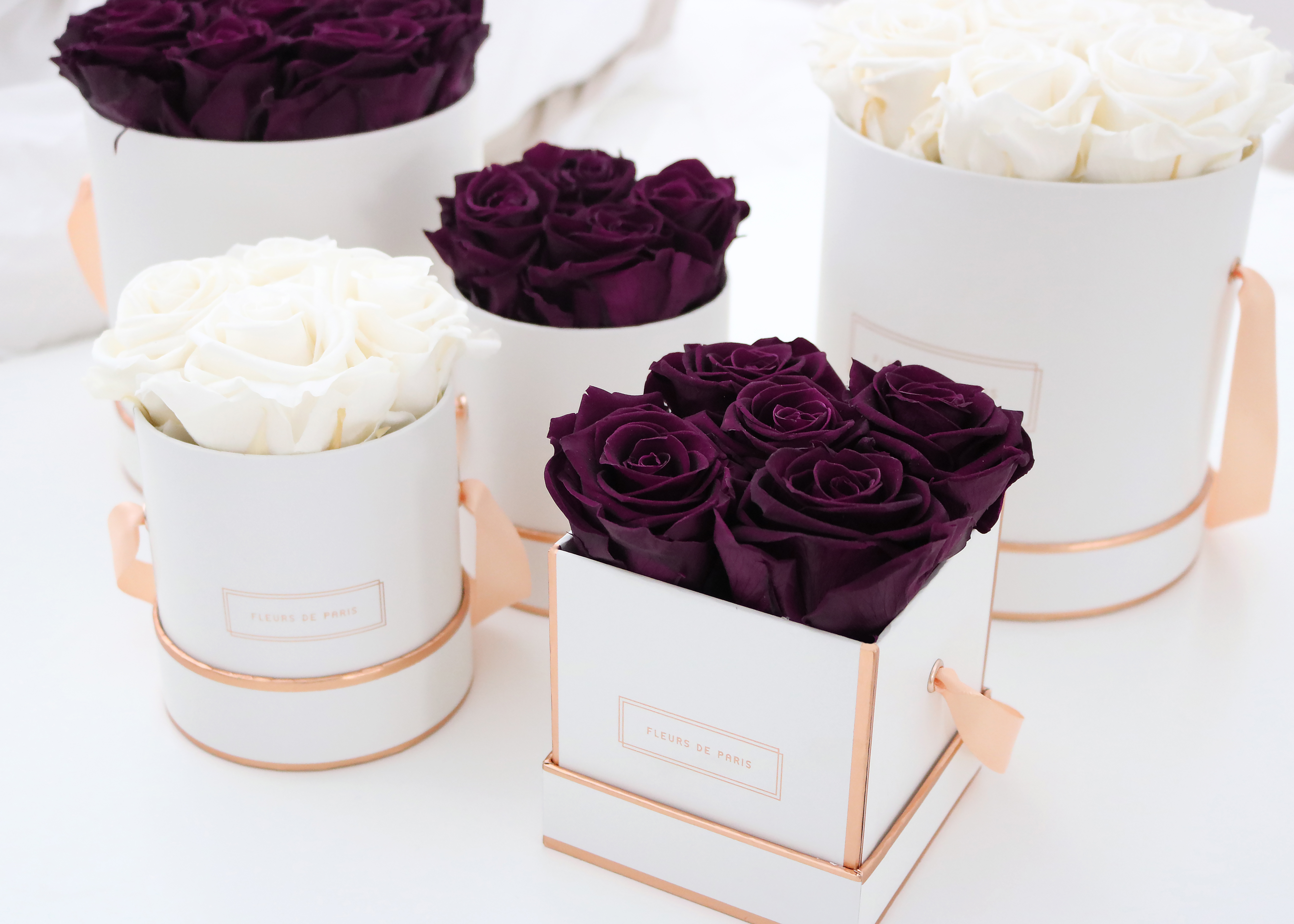 Fleur de Paris: Behind the roses - oder wie sich shiploud ...